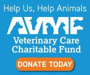 AVMF Donate Button Blue Square